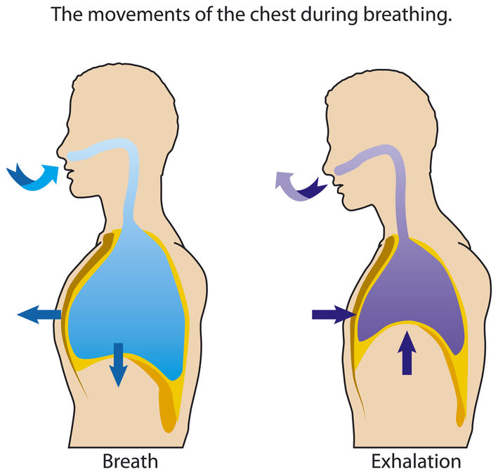 Vacuum and pressure while breathing.